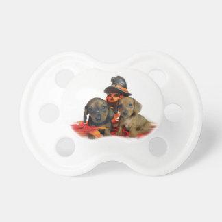 Halloween Dachshund puppies Baby Pacifiers