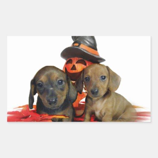 Halloween Dachshund puppies Sticker