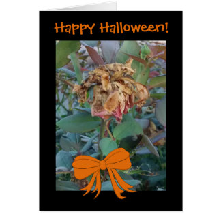 Halloween Dead Flower Photo 3 Funny Message Card
