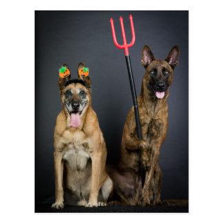 Halloween dogs postcard