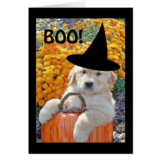 Halloween Funny Puppy Witch Note Card