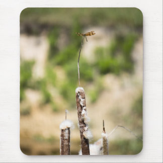 Halloween Pennant Dragonfly on a Cattail Perch Mouse Pad