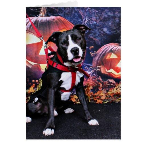 Halloween - Pitbull - Loki Greeting Cards