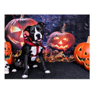 Halloween - Pitbull - Loki Postcard
