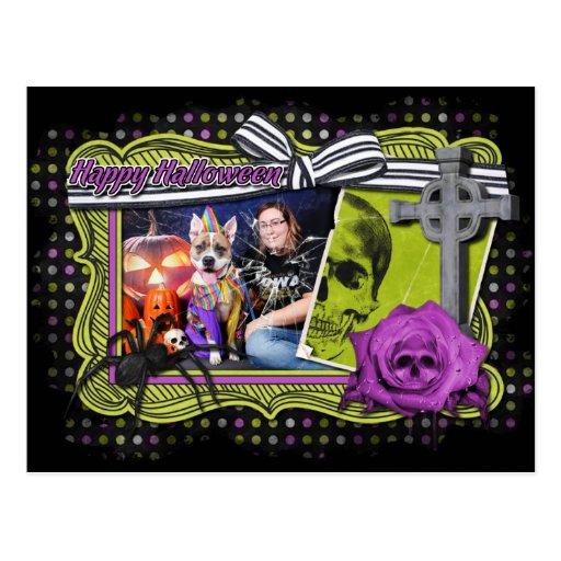 Halloween - Pitbull - Tyson Post Card