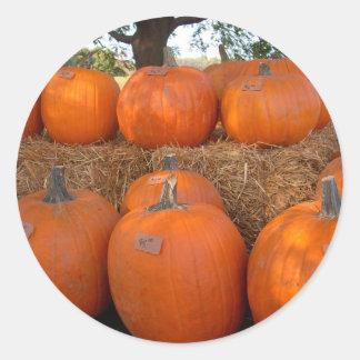 Halloween Pumpkins Round Sticker
