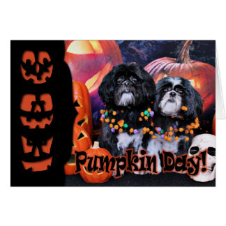 Halloween - Shih Tzu - Ruffles Riley Card