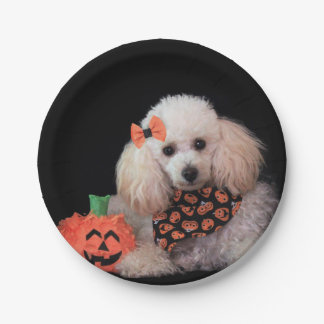 Halloween toy poodle dog paper plates