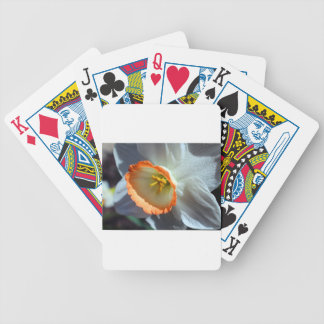 Halo Bicycle Playing Cards