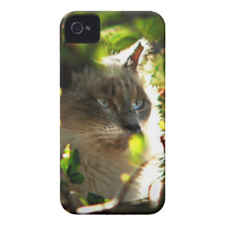 Halo in the Garden iPhone 4 Case-Mate Case