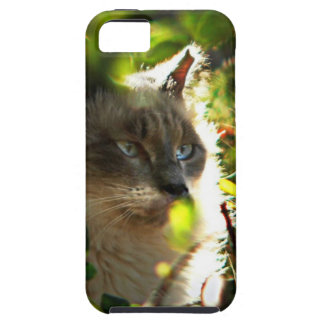 Halo in the Garden iPhone 5 Cover