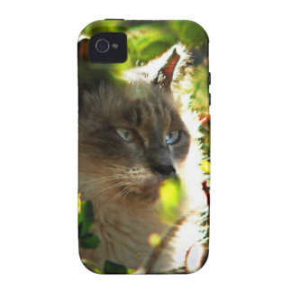 Halo in the Garden Case-Mate iPhone 4 Covers