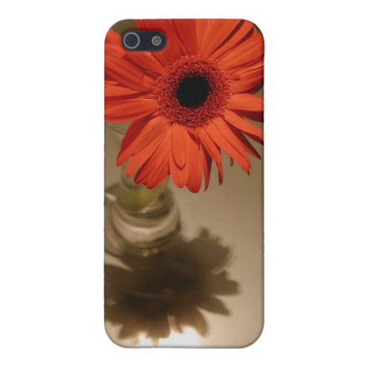 Halo & Silhouette Daisy Covers For iPhone 5