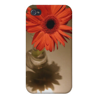 Halo & Silhouette Daisy Cover For iPhone 4
