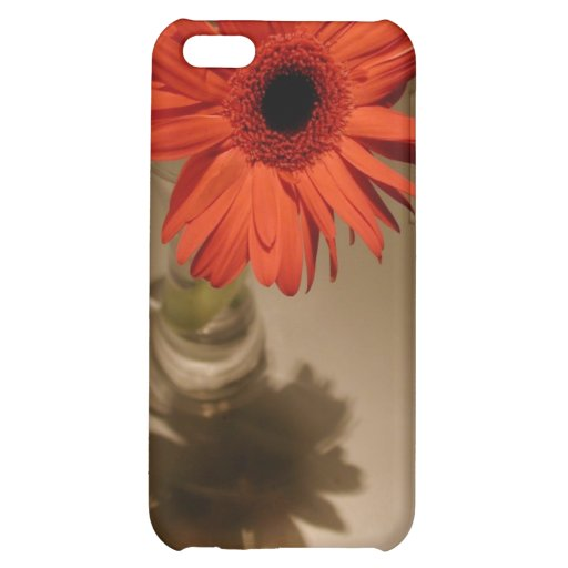 Halo & Silhouette Daisy iPhone 5C Covers