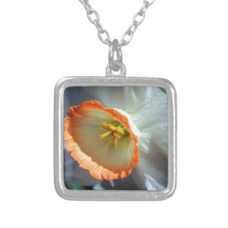 Halo Silver Plated Necklace