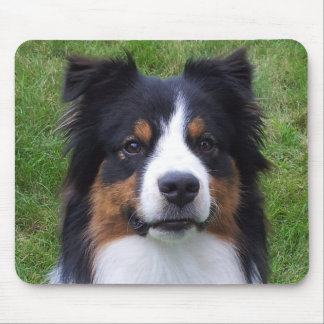 HALO the Aussie Dog Mouse Pad