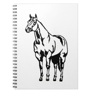 Halter American Quarter Horse Equestrian Notebooks