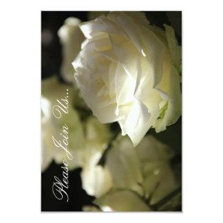 HAMbWG - Casual Invitation - White Roses