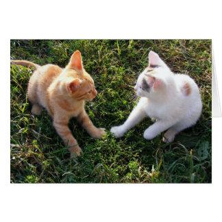 HAMbWG - Greeting Card - 2 Cats