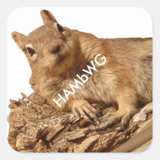 HAMbWG - Stickers - Squirrel White Logo