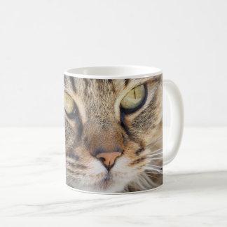 HAMbWG - White 11 oz Classic Mug - Cat Close-up