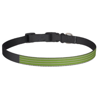 HAMbyWG - Dog Collar - Green Stripe