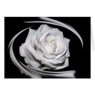 HAMbyWG - Greeting Card - Beautiful White Rose