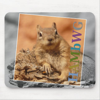 HAMbyWG -  Mouse Pad - Famous Squirrel