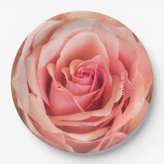 "HAMbyWG - Paper Plate 7 or 9"" - Peach Rose"