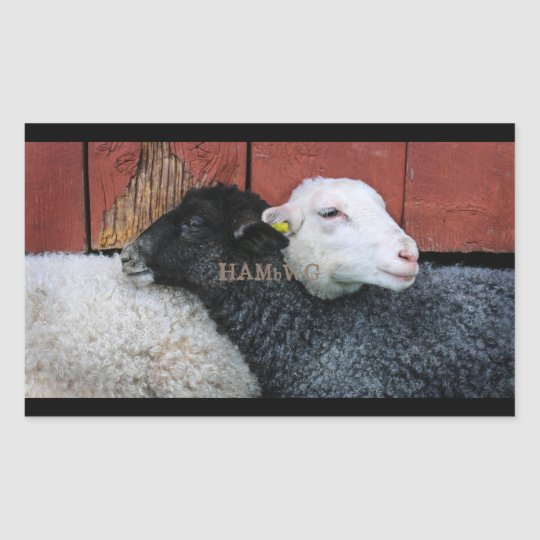 HAMbyWG- Stickers - Black Sheep White Sheep