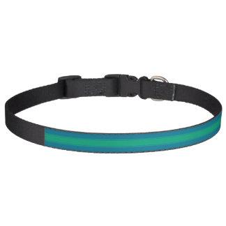 HAMbyWhiteGlove - Dog Collar - Hot Hot Turquoise