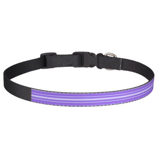 HAMbyWhiteGlove - Dog Collar - Purple