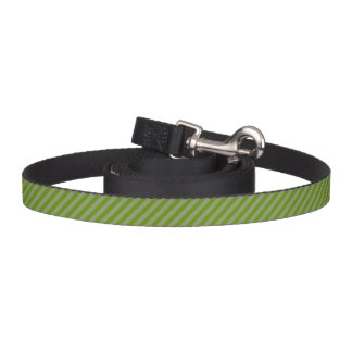 HAMbyWhiteGlove - Dog Leash - Green Diagonal