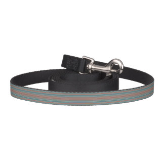 HAMbyWhiteGlove - Dog Leash - Teal & Rust