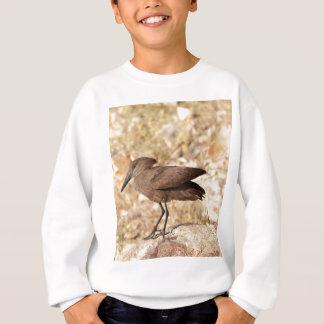 Hamerkop (Scopus umbretta) on a rock. Sweatshirt