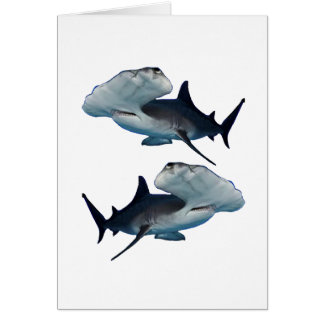 HAMMERHEADS BY TWO CARD