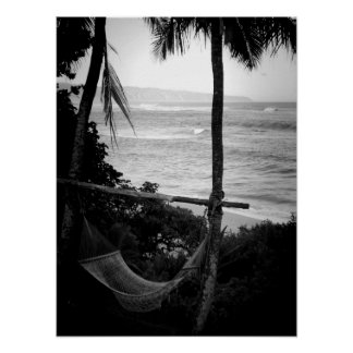 Hammock Overlooking the North Shore Poster
