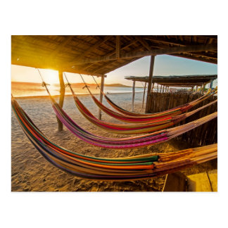 Hammocks Postcard