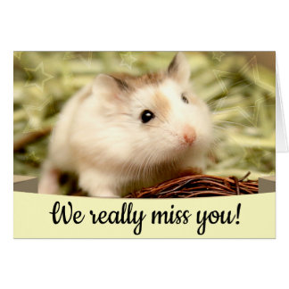 Hammyville - Cute Hamster Card