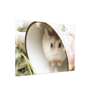 Hammyville - Cute Hamster in a Cup Canvas Print