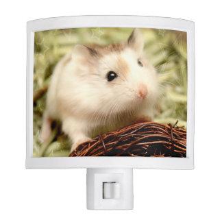 Hammyville - Cute Hamster Nite Lights
