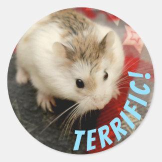 Hammyville - Cute Hamster Terrific Classic Round Sticker