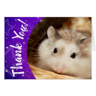 Hammyville - Cute Hamster Thank You Card