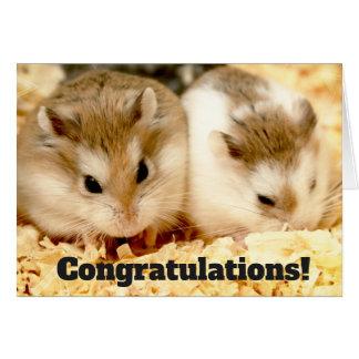 Hammyville - Hamster Congratulations Card