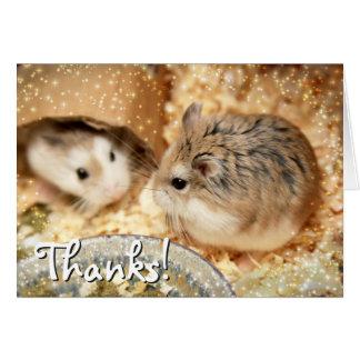 Hammyville - Hamster Friendship Card