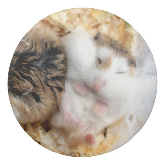 Hammyville - Personalized Cute Hamster Eraser