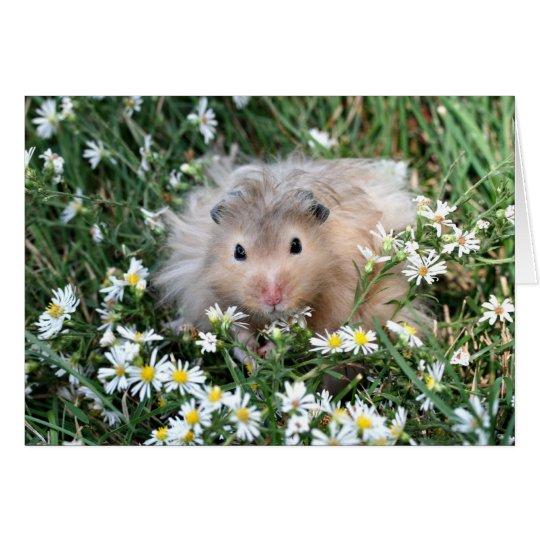 Hamster in flowers card