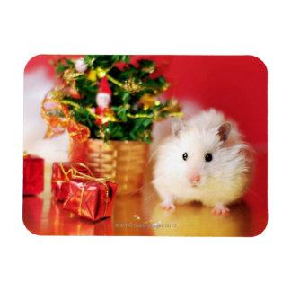 Hamster Kokolinka with Christmas tree Magnet
