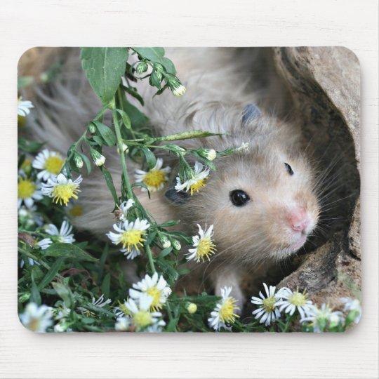 hamster mousepad